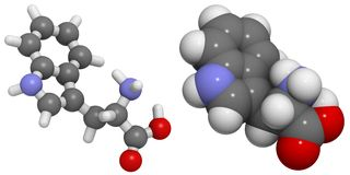 Tryptophane (Trp, W) molécule Photo stock