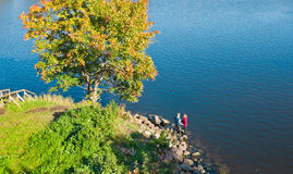 Tryst at the lake Royalty Free Stock Photo