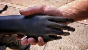 Trząść ręki z sztuką Obrazy Royalty Free
