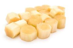 trzcina cukrowa zdjęcie stock