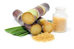 Trzcina cukrowa z liśćmi i granulującym brown cukierem na białym tle Fotografia Stock