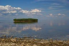 trzcinowa wyspa, jeziorny Peipsi, Estonia obrazy stock
