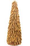trzciny futerka drzewo zdjęcia royalty free