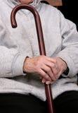 trzciny kobieta Fotografia Royalty Free
