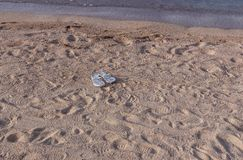 Trzepnięcie klapy w piasku bez właściciela obrazy royalty free