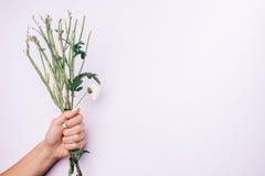 Trzony kwiaty w żeńskiej ręce z białym manicure'em na lekkim b Zdjęcia Stock