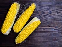 Trzy żółtego kukurydzanego cobs Zdjęcie Royalty Free