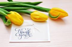 Trzy żółtego tulipanu z kartka z pozdrowieniami dziękują was Zdjęcia Royalty Free