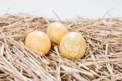 Trzy żółtego Wielkanocnego jajka w słomie Obraz Royalty Free