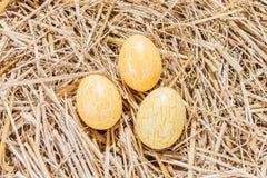 Trzy żółtego Wielkanocnego jajka w słomie Fotografia Stock