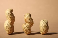 Trzy arachidu w skorupie Obrazy Royalty Free