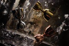 Trzy błyszczącej stali nierdzewnej osadzarki dla alkoholicznego napoju na bryle zamrażają zdjęcia royalty free