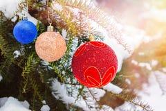 Trzy Bożenarodzeniowej piłki na jodły gałąź zakrywali śnieg abstrakcjonistycznych gwiazdkę tła dekoracji projektu ciemnej czerwie Zdjęcia Royalty Free