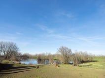 Trzy brązu konika w noord Brabant blisko zaltbommel w terenach zalewowy rzeczny Waal fotografia stock