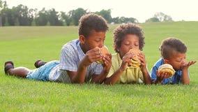 Trzy brata jedzą zbiory wideo