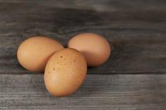 Trzy Brown kurczaka jajka Fotografia Stock