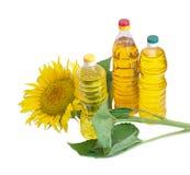 Trzy butelki różny słonecznikowy olej i kwiat słonecznik Zdjęcia Stock