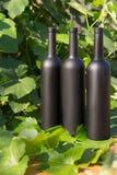 Trzy butelki wino stojaki przeciw zielonym li?ciom winnica ocet naturalny nap?j, intymni winnicy naturalny nap?j, zdjęcia royalty free
