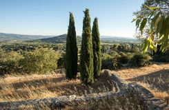 Trzy cyprysu wewnątrz w odpowiednim Muehle w Provence Zdjęcia Royalty Free
