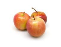 trzy czerwone jabłko Obrazy Royalty Free