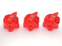 Trzy czerwonego przejrzystego prosiątko banka bez pieniądze Zdjęcia Royalty Free