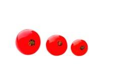 Trzy czerwonej dojrzałej porzeczkowej jagody odizolowywającej nad białym tłem Fotografia Royalty Free