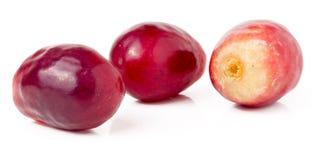 Trzy czerwonej jagody winogrona odizolowywający na białym tle Fotografia Royalty Free