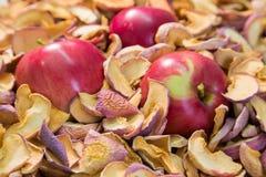 Trzy dojrzały czerwony Apple w stosie wysuszony - owoc Fotografia Stock