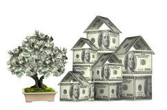 Trzy domu od dolarów banknotów i pieniądze drzewa Zdjęcia Royalty Free