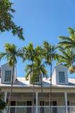 Trzy Dormers Za drzewkami palmowymi Obrazy Stock