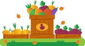 Trzy drewnianego pudełka z jesieni warzywami również zwrócić corel ilustracji wektora Obraz Royalty Free