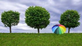 Trzy drzewa i parasol na tła chmurnym niebie Zdjęcie Royalty Free