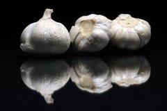 trzy garlics Zdjęcie Stock