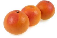 Trzy Grapefruits wewnątrz w górę dalej białego tła obrazy royalty free