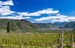 Trzy Grodowy spacer, Południowy Tyrol Zdjęcie Stock
