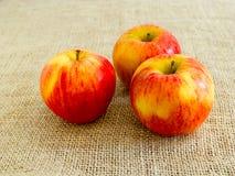 Trzy jabłka na kanwie Obrazy Stock