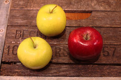 Trzy jabłka na kruszcowej i drewnianej rocznik skrzynce Obrazy Royalty Free