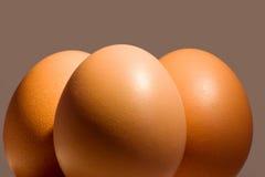 trzy jajka Zdjęcie Stock