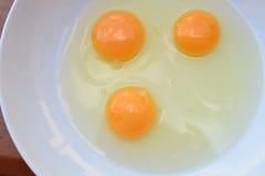 trzy jajka Fotografia Royalty Free