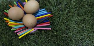 Trzy jajka kłaść na kijach na trawie obraz stock
