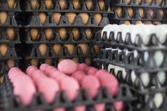 Trzy jajka, kurczaków jajka, jajka konserwujący w potażu lub kaczek jajka jakby, utrzymani jajka, kaczki/amoniakalni i soleni Zdjęcie Royalty Free