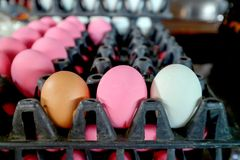 trzy jajko na pakunku w rynku, normalny jajko, solony prese i jajko Fotografia Stock
