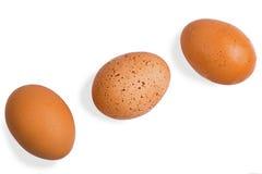 trzy jajko odizolowywający na białym tle Obraz Stock
