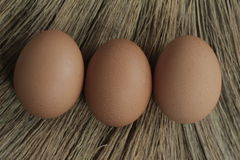 Trzy jajko traw tło Obraz Stock
