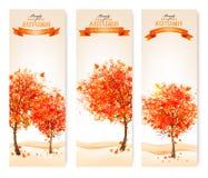 Trzy jesień abstrakcjonistycznego sztandaru z kolorowymi liśćmi i drzewami Zdjęcie Stock