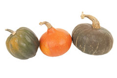 Trzy jesieni kolorowego kabaczka odosobniony biały tło Obraz Royalty Free