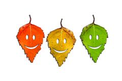 Trzy kolorów żółtych jesieni liść z Halloweenowym stawia czoło Obrazy Stock