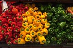 Trzy kolor słodki pieprz Fotografia Stock