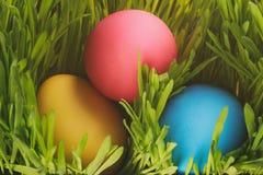 Trzy kolorowego Easter jajka w trawie Fotografia Royalty Free