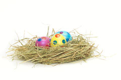 Trzy kolorowego Wielkanocnego jajka w gniazdeczku Obraz Royalty Free